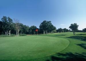tangle-oaks-golf