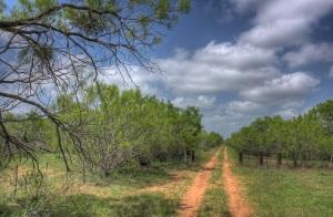 batesville-texas